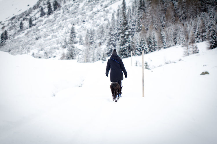 Rear View Of Woman Walking With Dog On Snow Covered Landscape