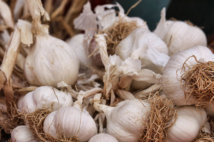 Close-up of garlic bulbs for sale in market