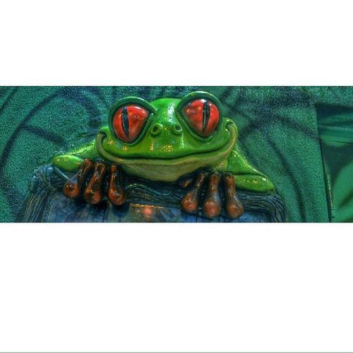 Hi children. Frog Art Rainforestcafe Nikon Editing