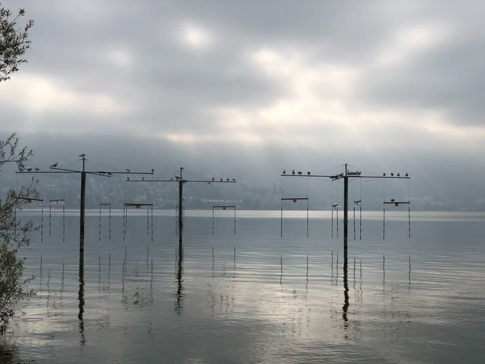 Water Cloud - Sky Sky Sea Beauty In Nature Tranquility Nature Reflection Scenics - Nature Day Animal Themes Wooden Post No People Tranquil Scene Waterfront Horizon Over Water Bird Vertebrate Outdoors
