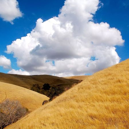 Can't wait for rain Clouds Thedroughtisreal Open Air California