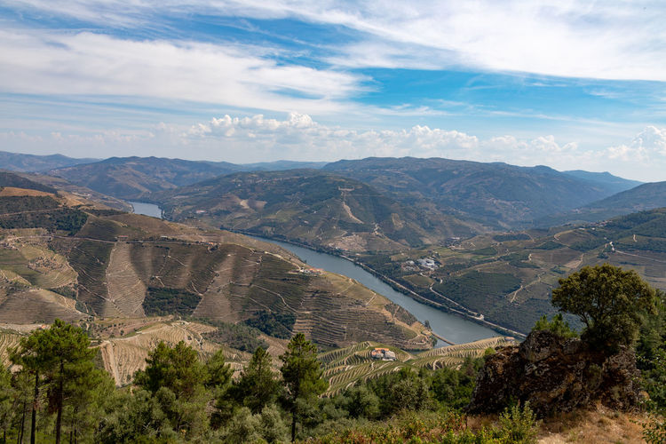 Douro valley landscapes , Portugal Douro  Pattern, Texture, Shape And Form Portugal Beauty In Nature Cloud - Sky Day Environment Idyllic Land Landscape Mountain Mountain Range Nature No People Non-urban Scene Outdoors Plant Remote Scenics - Nature Sky Tranquil Scene Tranquility Tree