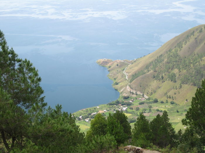 Island on island, lake Toba Beauty Of Nature Beauty Blue Green Mothernature Naturelovers Nature Photography Nature_collection Amazing_captures Amazing View Lake Toba Lake View Medan Indonesia Medan Environment Landscape Outdoors Land Green Color High Angle View Mountain No People Growth Day Tranquil Scene Sea Tranquility Nature Beauty In Nature Scenics - Nature Tree Plant Water
