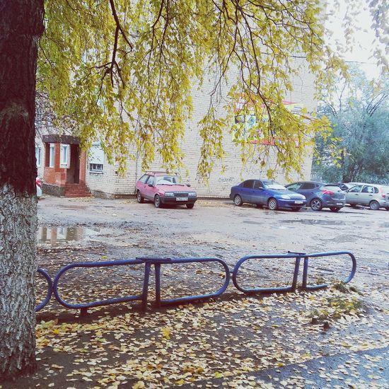 осень прекрасна 🌾🍂🍃 осень желтыелистья городзолотой осеньвгороде Золотая осень золотаяосень 2015  First Eyeem Photo природа и красота