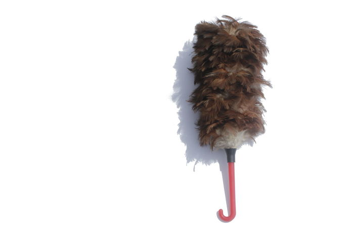 Feather duster On a white background Brush Bucket Housekeeper Housework Purity , Feather Cleaner Animal Themes Bird Brush Strokes In The Sky Close-up Copy Space Day Düster Feather Duster  Mammal No People One Animal Outdoors Small Snow Studio Shot Tool White Background Winter