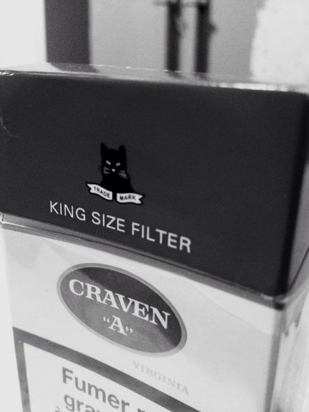 "my eternal love Yummy Craven "" Black Cats """