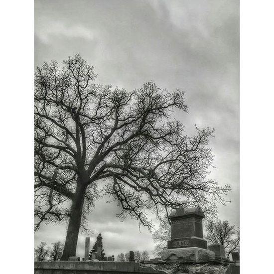 Local graveyard in Atchison Kansas.... Ks_pride World_bnw Graveyarddead Graveyard Wow_america_bnw Bnw_nature Bnw Bnw_captures Bnw_demand Blackandwhite Blackandwhitephotography Blackandwhitekansas