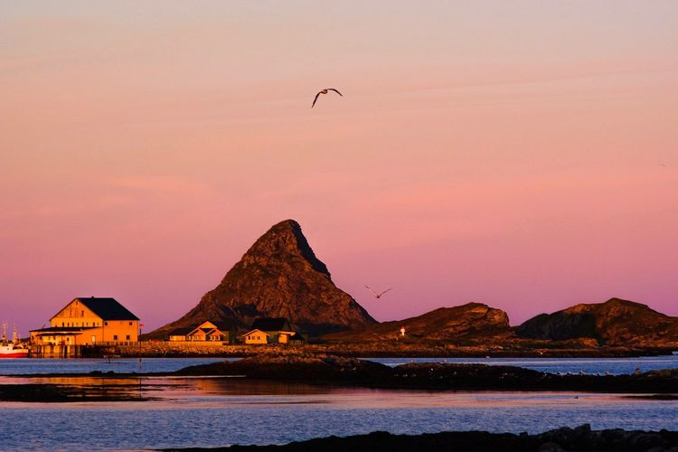 Rost, an island outside Lofoten, Norway Sky Water Sunset Bird Beauty In Nature Scenics - Nature Sea Nature Tranquility No People Tranquil Scene Mountain Waterfront Outdoors EyeEmNewHere