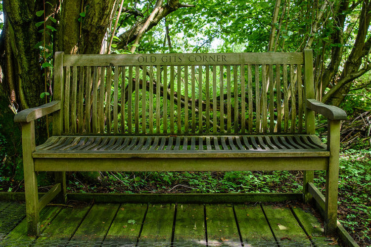 """""""Old gits' corner. Fancy taking a seat in this restful woodland setting? Bench Bench Seat Old Gits Corner WoodLand Old Git Peaceful Corner Peaceful Place Woodland Bench Woodland Path Woodland Photography Woodlands"""