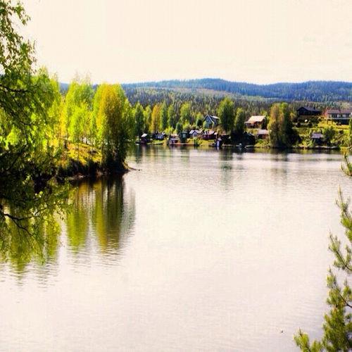 My Neighborhood Mara Silva Nature Fjords Norge Norway