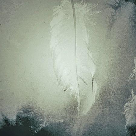 Visit from an Angel NEM Submissions NEM GoodKarma WeAreJuxt Mobfiction