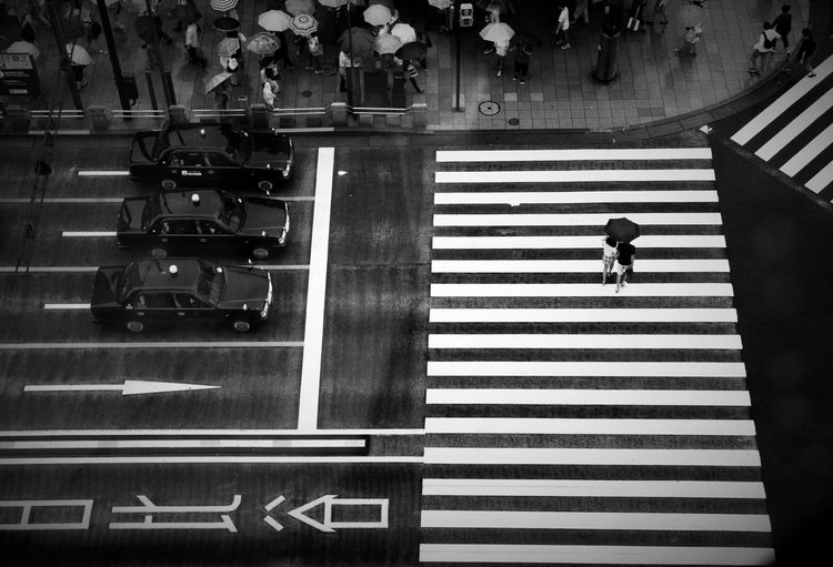 Crosswalk City
