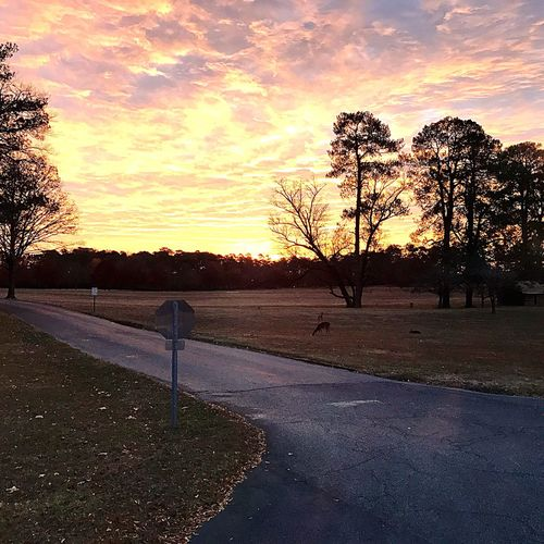 Sunrise Berry College Outdoors