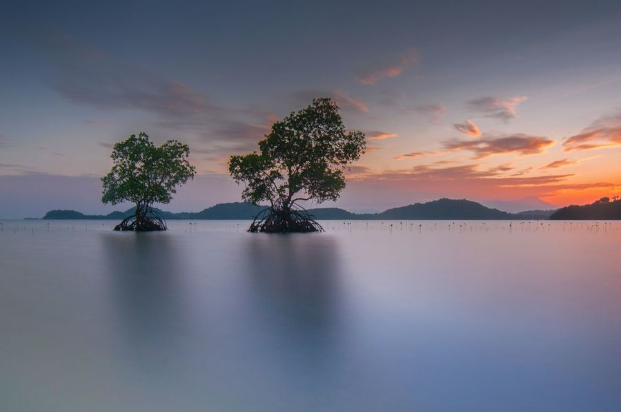 Tree Water Landscape Nature Surface Level Backgrounds No People Tranquility Reflection Lake Sky Outdoors Traveling Slowspeed Slowspeedphotography Longexposure Longexposurephotography