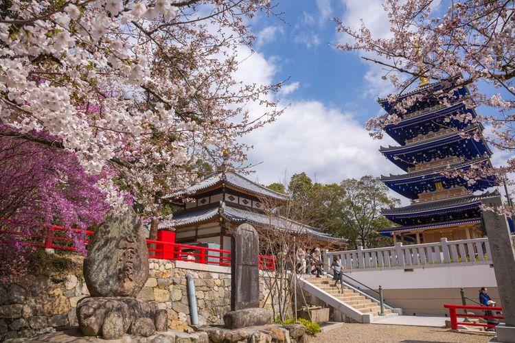 春の中山寺 Nakayama Hokekyoji Temple Nakayama Temple Temple Japan Photography Japan Spring Tree Flower City Sky Architecture Built Structure Building Exterior Cloud - Sky Traditional Building Cherry Blossom