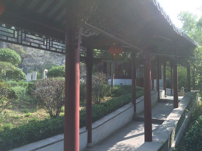 Architecture Roof Built Structure Tree Day No People Architectural Column Outdoors Nature Growth Building Exterior Temple Sunlight History Ancient Civilization China EyeEmNewHere Green Color Nature