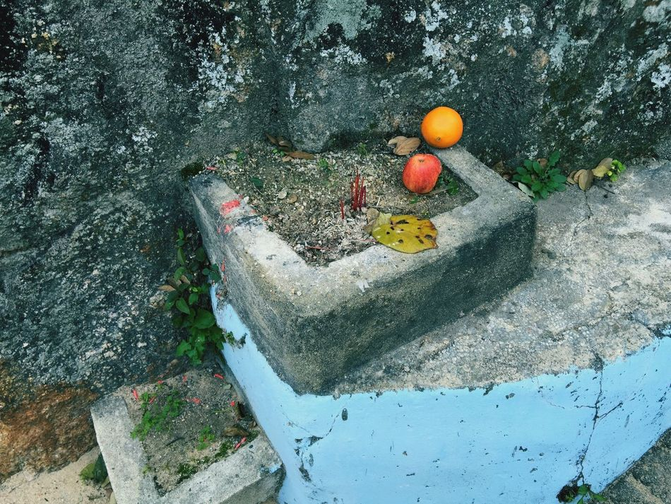 Ritual Apple Scent