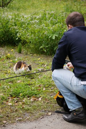 Calico cat/三毛猫 Calicocat Cat Lovers Hanging Out Relaxing Enjoying Life I Heart Tokyo Walking Around LUMIX DMC-GX7