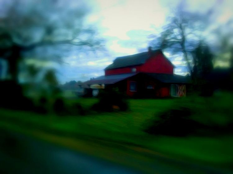 House Cottage Architecture Built Structure Farmhouse Green Color Building Exterior Nature Outdoors A Dash Of Magic Color Photography EyeEm Master Class Vote For HillaryClinton EyeEm Photo Of The Day Telling Stories Differtenly Eyeem Market Place EyeEm Best Edits I LOVE PHOTOGRAPHY The Week On EyeEem Outdoors Photograpghy  Illuminated Tranquil Scene Beauty In Nature Growth Landscape