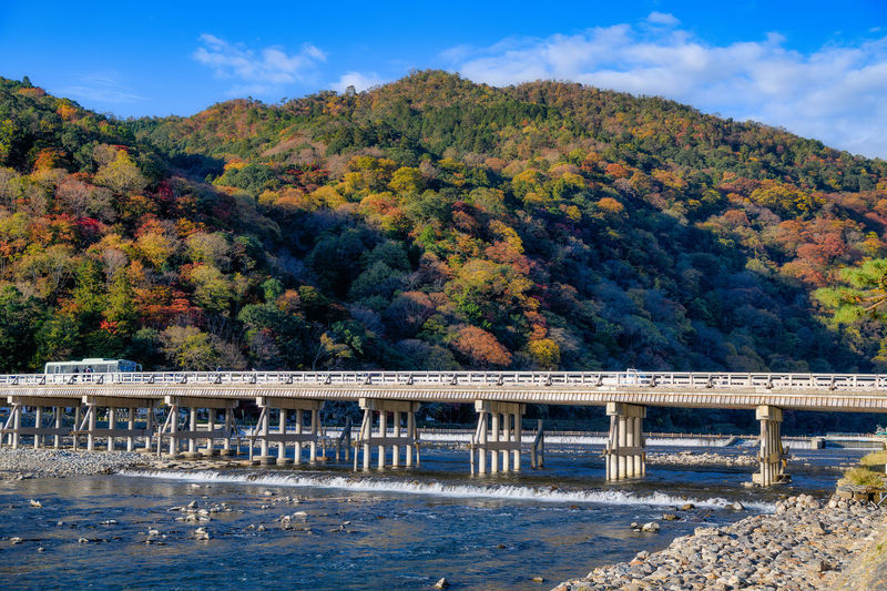 Connection Water Bridge Nature Tree Built Structure Bridge - Man Made Structure Plant Architecture Change Mountain Day Autumn Beauty In Nature Scenics - Nature No People Sky Non-urban Scene River Outdoors Autumn Collection Kyoto Arashiyama Autumn Autumn Leaves