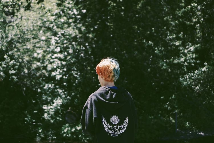 Rear view of boy standing against trees