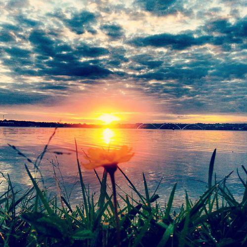 Sun Sky Sunrise Sol Brazil World Natureza Nature Céu Lake