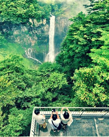 Water Photographing Photography Themes Day Waterfall Tree Camera - Photographic Equipment Nature Outdoors Wireless Technology Forest Technology Selfie Beauty In Nature From Above  Green Waterfalls Waterfall_collection Japan Shotoniphone7 Taking Photos Of People Taking Photos Enjoying The View Amazing View Amazing Japan Lost In The Landscape Connected By Travel