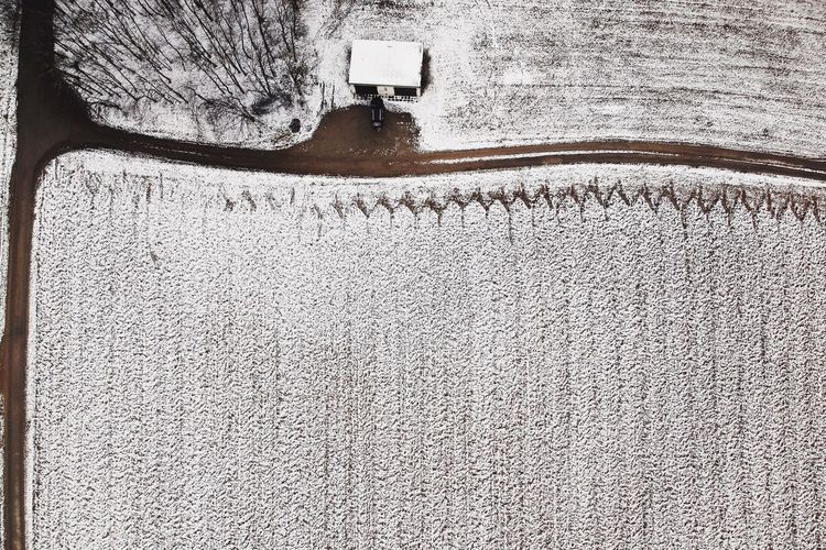- WINTER'S LAST REARING UP - Shades Of Winter Check This Out Agriculture Field Landscape_Collection Winter_collection DJI X Eyeem Birds Eye View Drone Photography Dronephotography Drone  Day No People Outdoors Architecture Built Structure Nature Close-up The Great Outdoors - 2018 EyeEm Awards