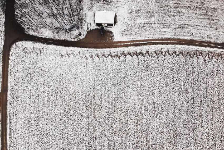 - WINTER'S LAST REARING UP - Shades Of Winter Check This Out Agriculture Field Landscape_Collection Winter_collection DJI X Eyeem Birds Eye View Drone Photography Dronephotography Drone  Day No People Outdoors Architecture Built Structure Nature Close-up