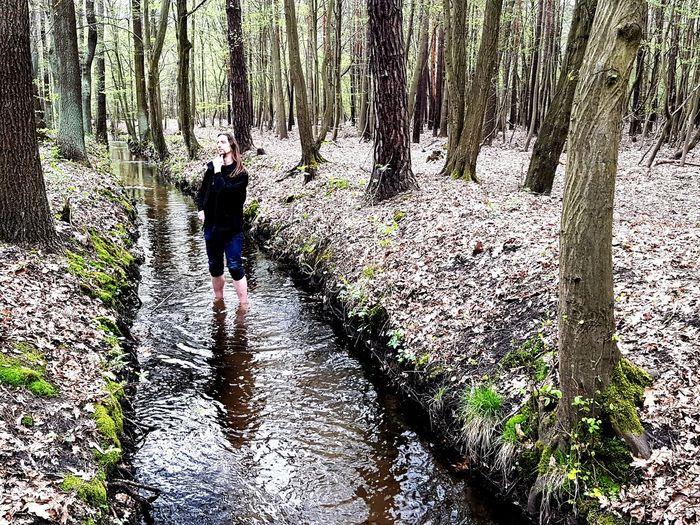 Forrest Water Dichter Und Denker