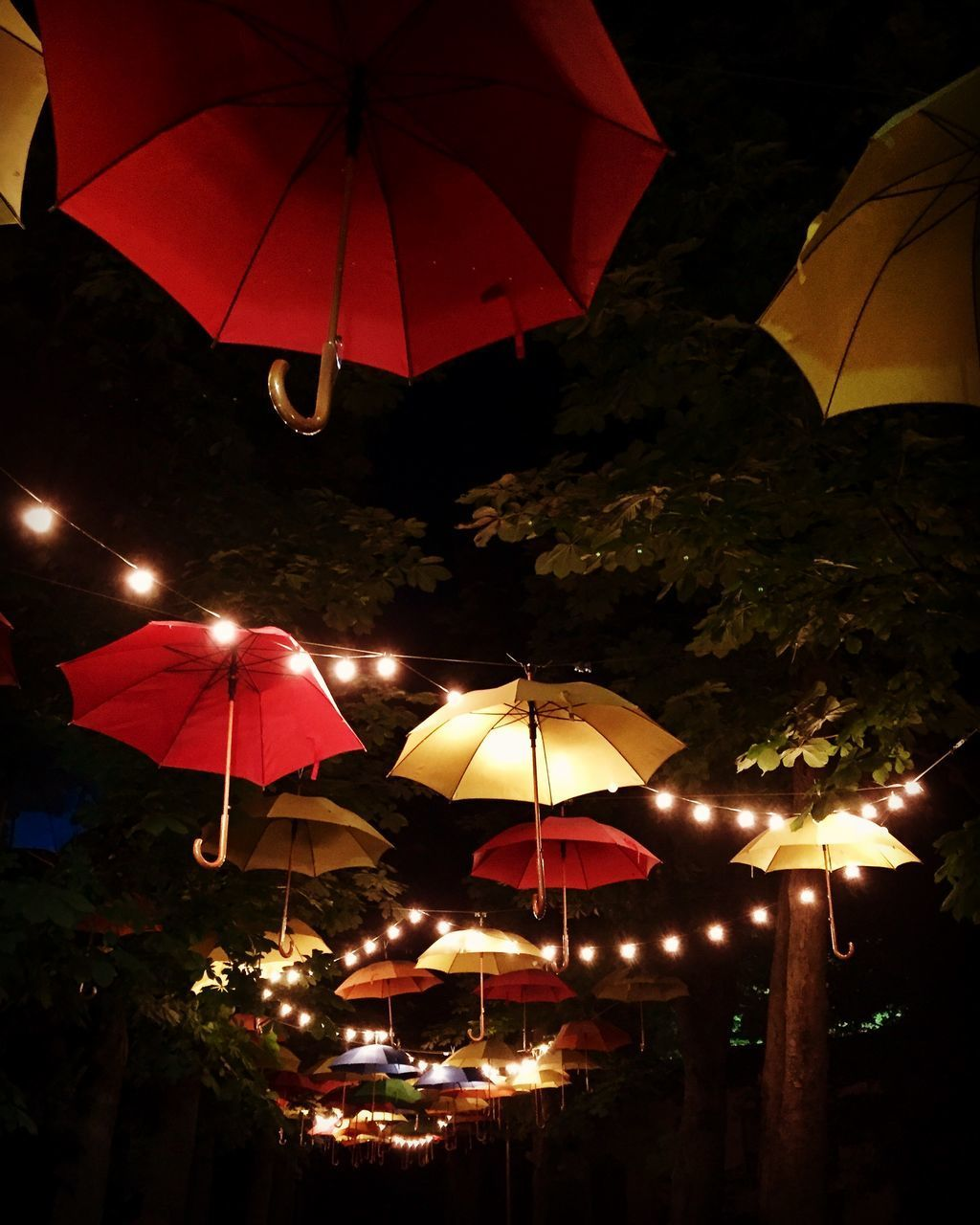 illuminated, protection, umbrella, security, night, lighting equipment, parasol, no people, hanging, nature, tree, outdoors, glowing, plant, decoration, safety, low angle view, water, city, light
