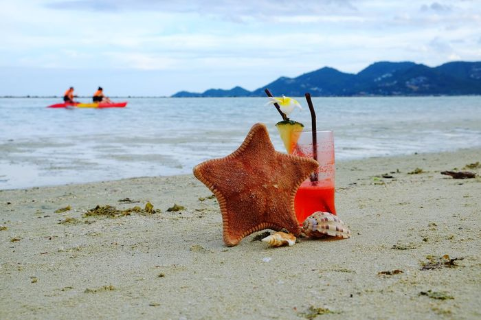 Beach Sea Sand Day Outdoors Red Sky Nature Water Tourist Holiday Summer Time Season  Live Style Cocktail Mai Tai Seashell Mountain Pineapple Flower Drink Rolex Happy