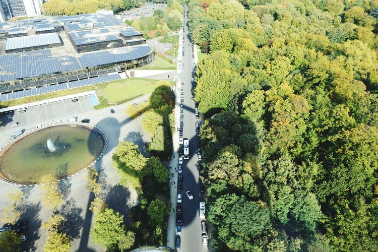 Atomium Brussel Shadow Photography Nature Tree Perspectives On Nature