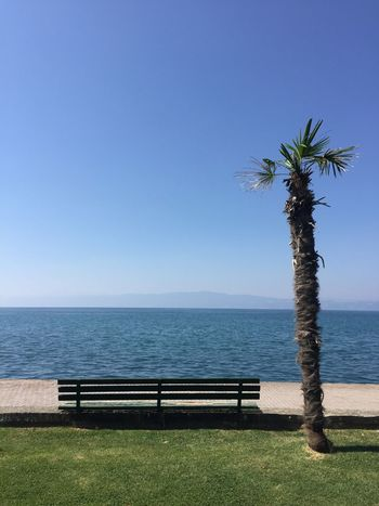 Water Horizon Over Water No People Sky Landscape Bench Palm Tree Mountain Range Lake Blue Blue Sky Green Grass