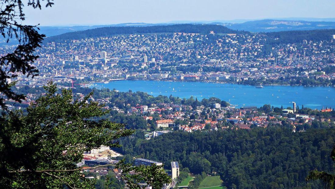 Zürich with Zürichsee Adliswil Blue Felsenegg Landscape Sky Switzerland Tree Zürich Zürichsee