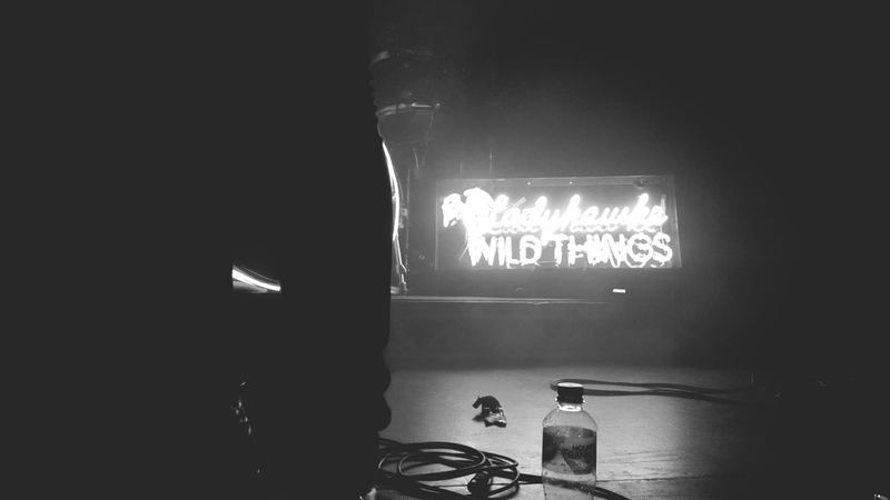 Wild things. Ladyhawke Giglife Photography Nightsinthecity Oxfordartfactory Live Music