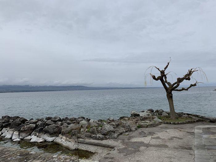 Lake Leman,