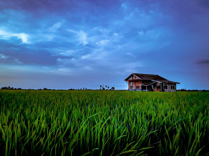 House on agricultural field against sky