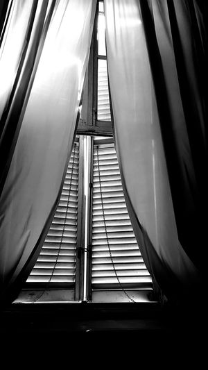 Old Palace Interior Detail My City Window Closed Window  Jalousie Window Black And White Photography Shadows & Lights Sunlight Silence Curtains Symmetry Drapes  Closed Building Window Frame Curtain Parallel