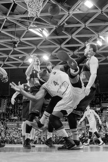 Action Action Shot  Basketball Indoors  Sport February Showcase