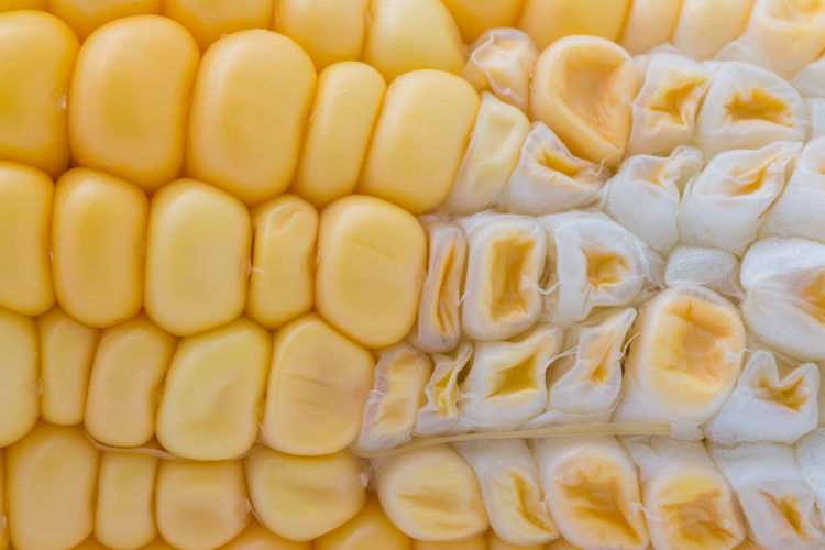 Abundance Backgrounds Chopped Close-up Corn Corn On The Cob Food Food And Drink Freshness Full Frame Healthy Eating High Angle View Indoors  No People Pattern Raw Food Still Life Sweetcorn Vegetable Vegetarian Food Wellbeing Yellow
