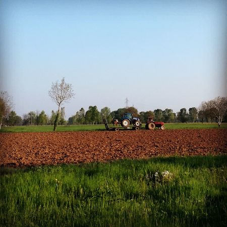EyeEmNewHere No People Day Outdoors Nature Martesana Italy Tractor Field Agricolture Agriculture Photography