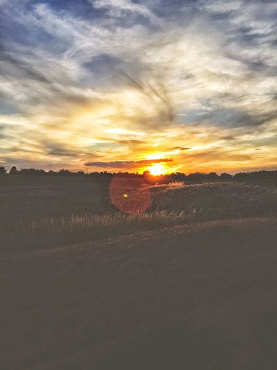 Sunset Landscape Tranquil Scene Tranquility Sky Beauty In Nature Nature Field Scenics No People Outdoors Day Sunlight Sunsets EyeEmNewHere