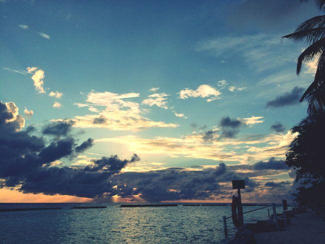 sunrise Colour Of Life