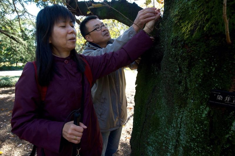 Sight without Seeing   Tokyo - Though blind since birth, Segawa Mieko loves the feel, smell, and sounds of nature. Every month, she and her friends, who are also blind, gather as part of an organization called Nature Feeling. Paired with a seer, they wa