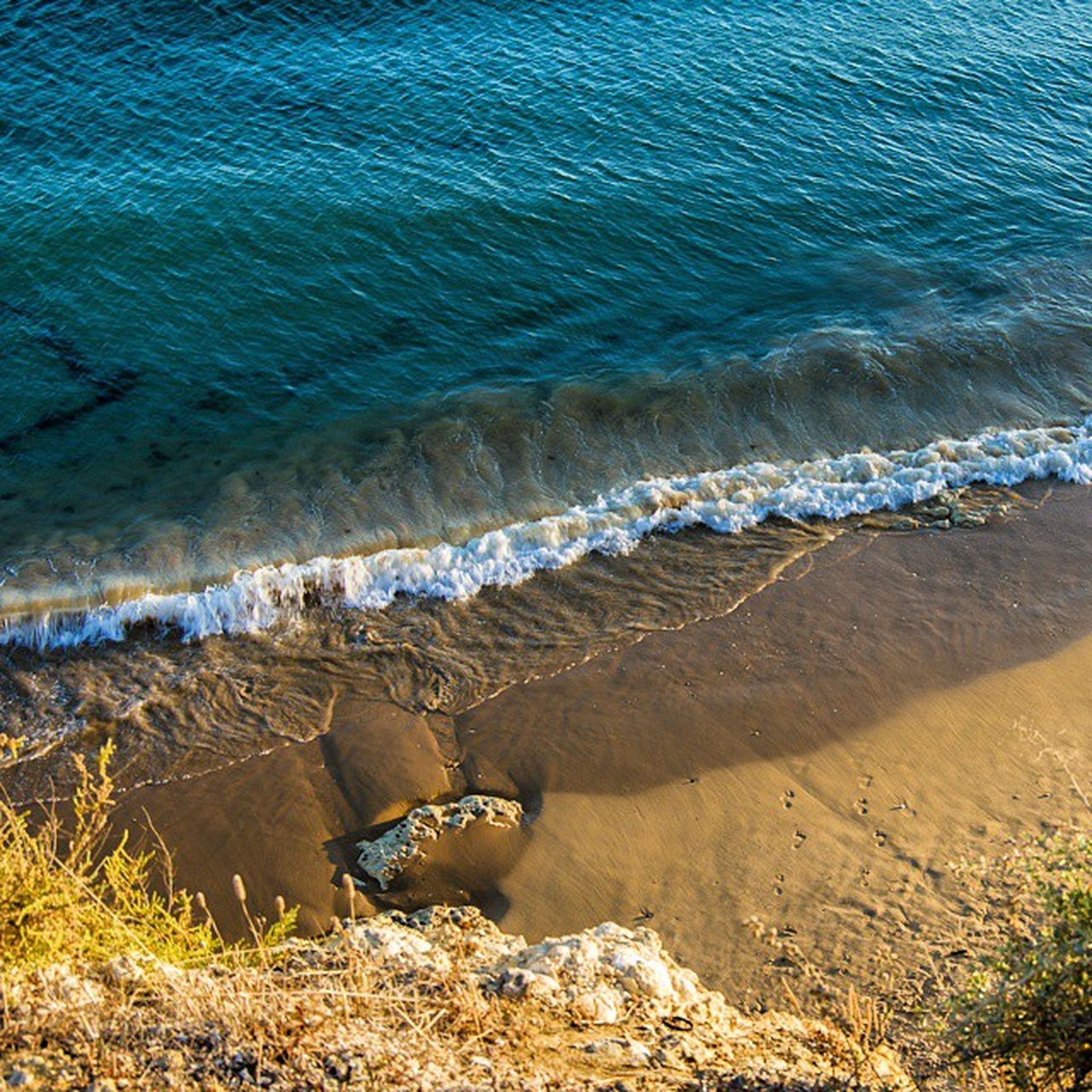 water, beach, sea, sand, shore, high angle view, tranquility, nature, blue, tranquil scene, day, beauty in nature, outdoors, sunlight, relaxation, coastline, scenics, animal themes, wave, horizon over water
