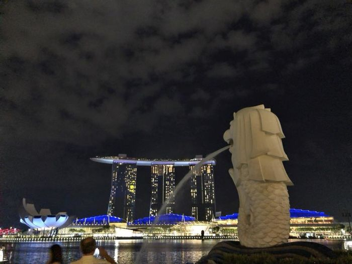 Big City Harbor Singapore Architecture Built Structure Merlion Night Waterfront