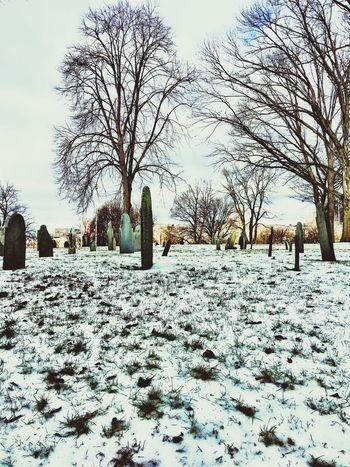 Travelphotography Travel Boston FreedomTrail History Through The Lens  Historic Cemetery_shots Life Snow Frozen Landscape