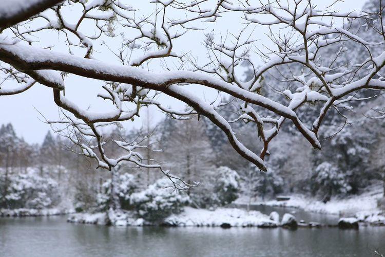 宜蘭明池 雪白世界