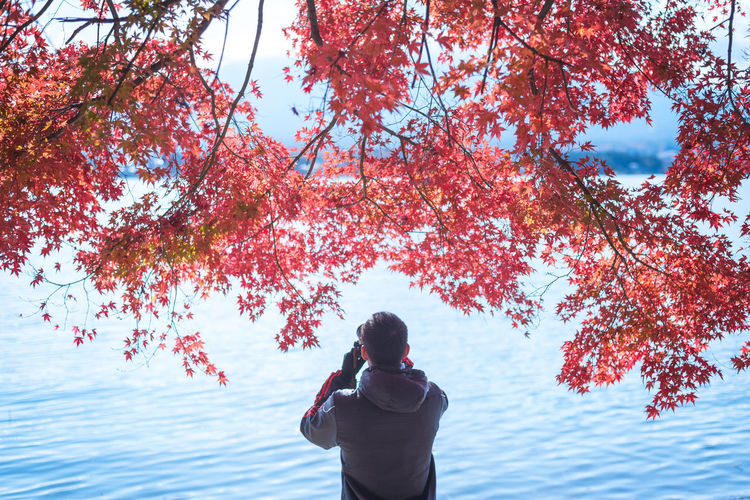 Photographer surround by Autumn maple leaves in Lake Kawaguchi, Japan. Autumn Autumn Travel Autumn colors Autumn Leaves Autumn Maple Japan Japan Autumn Kawaguchi Lake Kawaguchiko Travel Autumn Colours Autumn🍁🍁🍁 Beauty In Nature Japan Travel Nature One Person Outdoors Photographer The Great Outdoors - 2018 EyeEm Awards